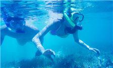 Pacific Islands Club на Сайпане - Спорт - Плавание с маской и трубкой
